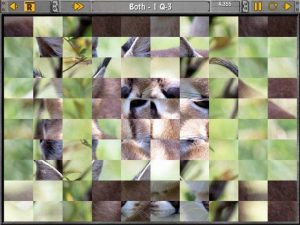 Sliders-and-Other-Square-Jigsaw-Puzzles-free-download-full